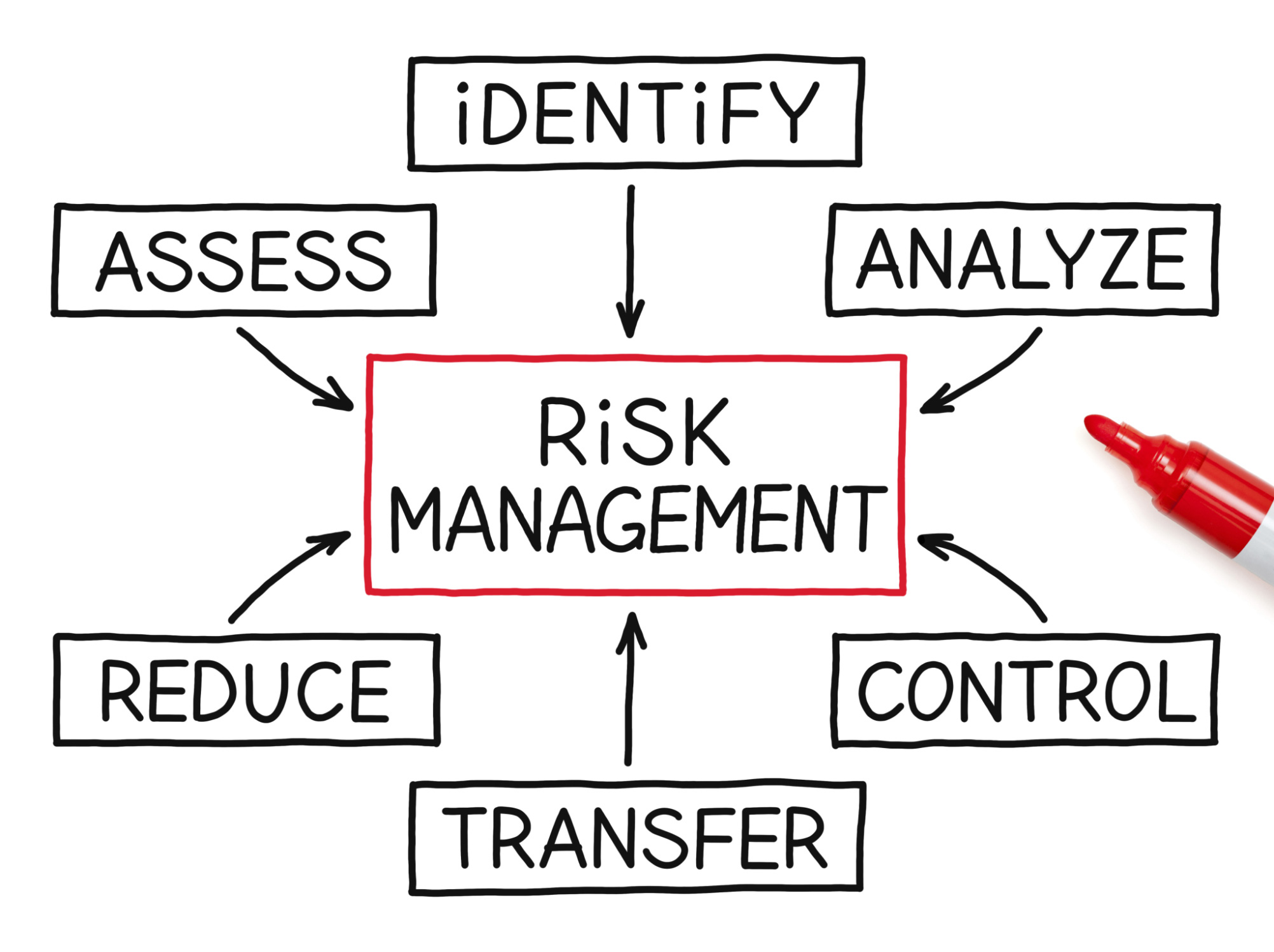 Risk Management and Insurance currency grading companies