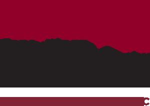 Sagemark Consulting - Robert Sesich - El Paso, TX