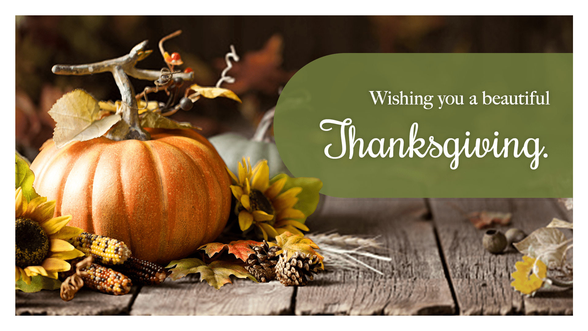 Wishing you a beautiful Thanksgiving.